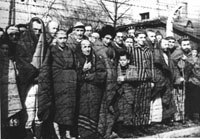 Auschwitz prisoners liberated by the Red Army in January 1945 (Photo from the Archives of the Auschwitz-Birkenau Museum)
